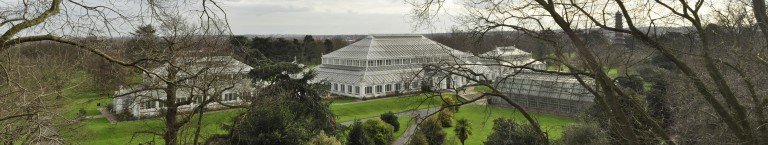 greenhouse panorama
